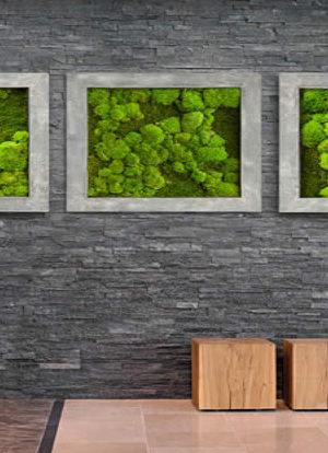 moss dekoration