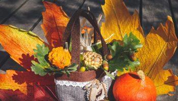 autumn-3691595_640