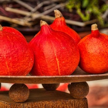 pumpkin-3731499_640