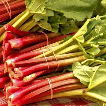 market-fresh-rhubarb-3503166_640