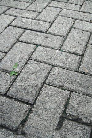 paving-block-290808_640