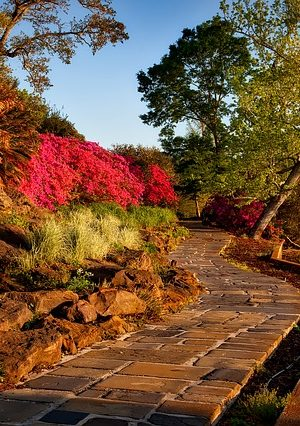 bellingrath-gardens-1612730_640