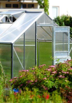 greenhouse-827464_640