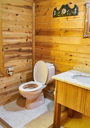 bathroom-4787940_640