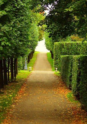 walkway-2550655_640