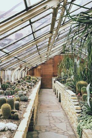 greenhouse-768740_960_720